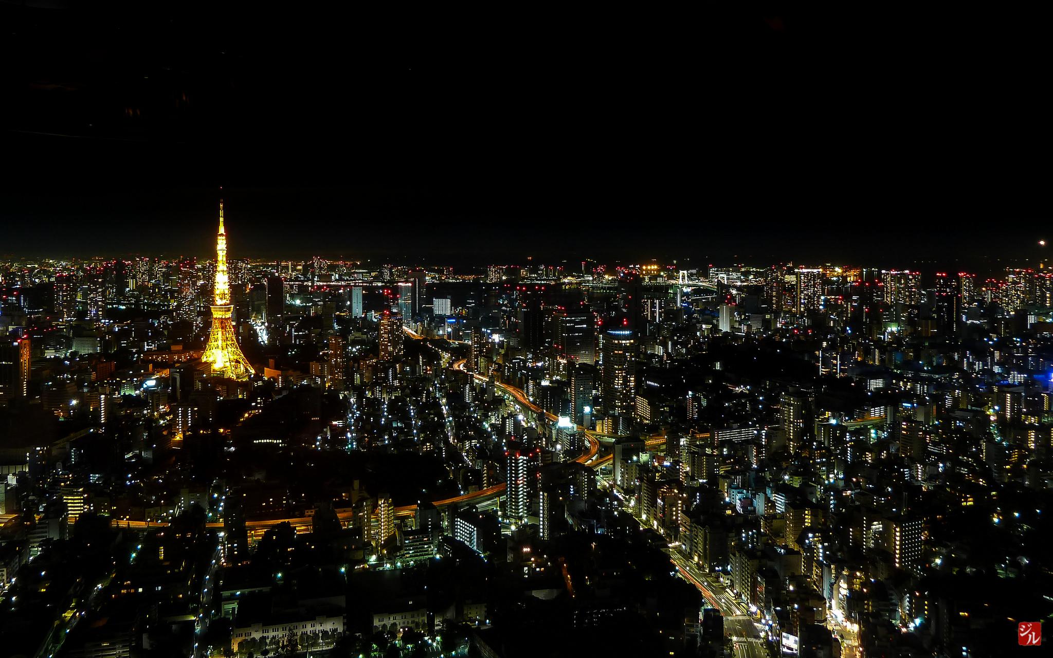 Tokio, nächtliche Skyline. Links im Bild, der leuchtende Tokyo Tower.