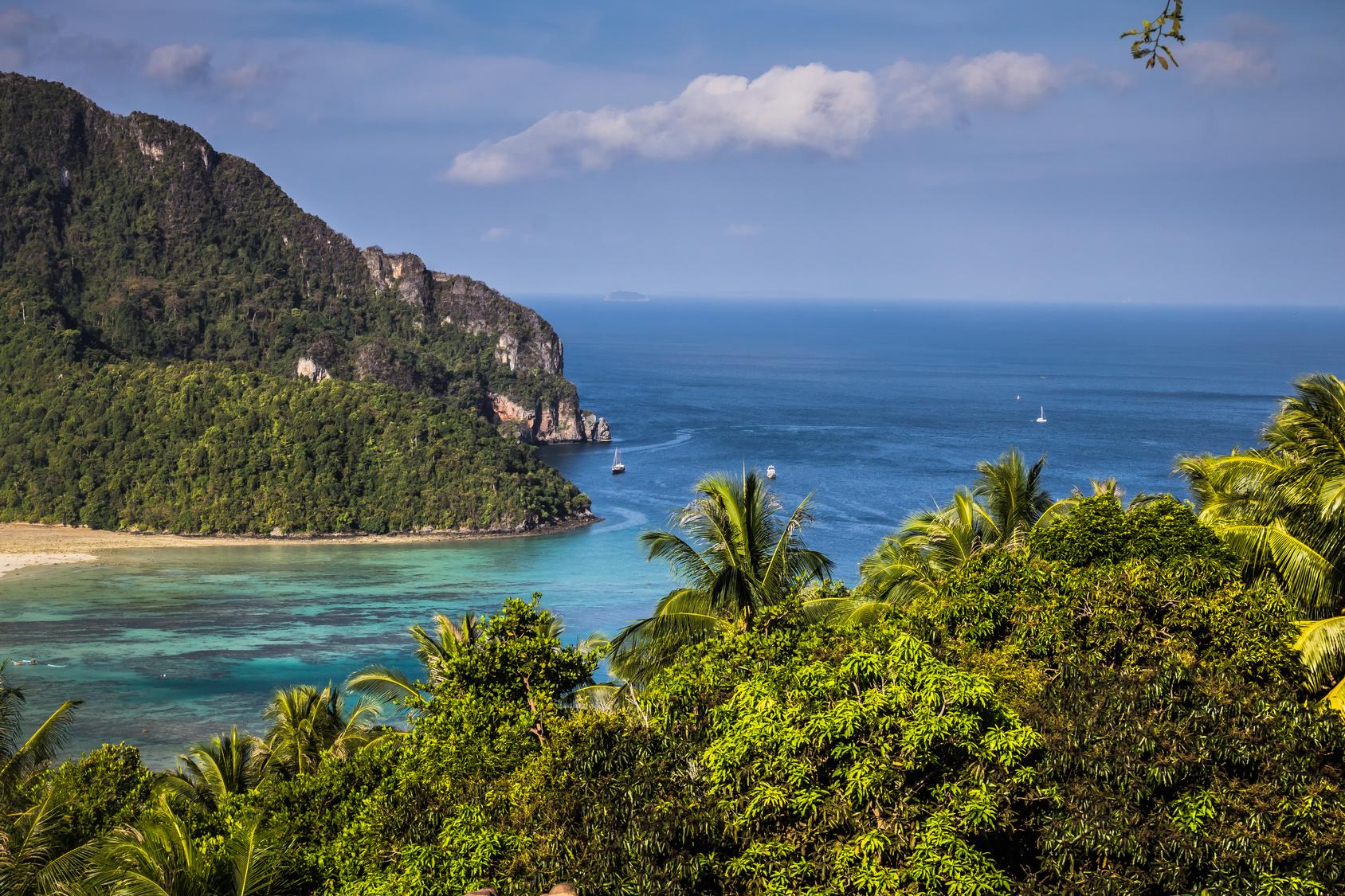 Panoramasicht auf eine Bucht der Ko Phi Phi-Inseln mit Palmen im Vordergrund.
